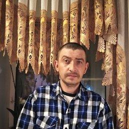Алексей, 38 лет, Углич