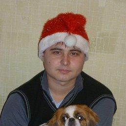 Алексей, 32 года, Белгород