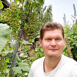 Максим, Ярославль, 29 лет