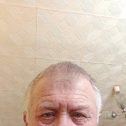 Виктор, 68 лет, Ярославль