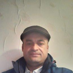 Руслан, 36 лет, Красноярск
