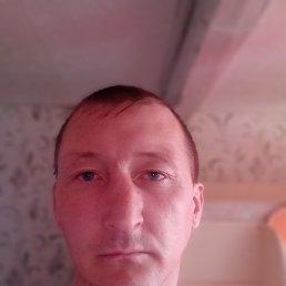 Александр, 36 лет, Пермь