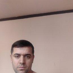 Саид, 36 лет, Хотьково