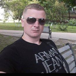 Вадим, 29 лет, Черновцы