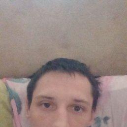 Николай, 27 лет, Волоколамск