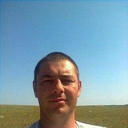 Андрей, 43 года, Луганск
