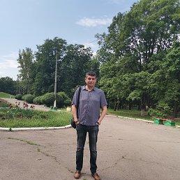 Александр, 42 года, Горловка
