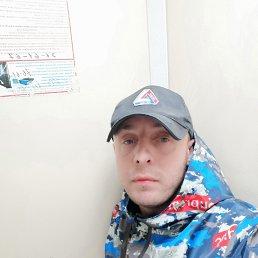 Дмитрий, 35 лет, Новороссийск