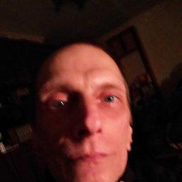 Андрей, 41 год, Северодонецк