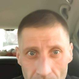 Александр, 41 год, Калининград
