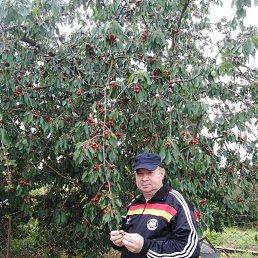 Владимир, 45 лет, Краснодар