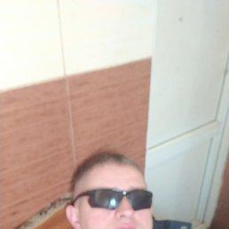 Денис, 35 лет, Белгород