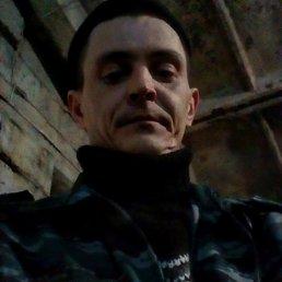 Роман, 33 года, Саратов