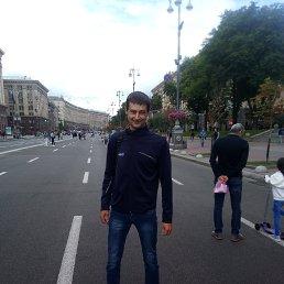 Sasha, 29 лет, Кировоград