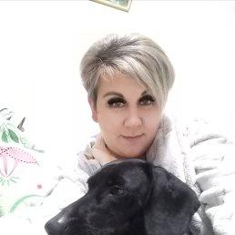 Ирина, 43 года, Красногорск