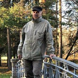 Геннадий, 54 года, Гатчина