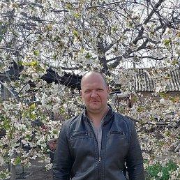 Валерий, 44 года, Новошахтинск