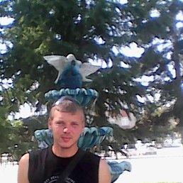 Денис, Новосибирск, 27 лет