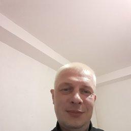 АНДРЕЙ, 42 года, Дмитров
