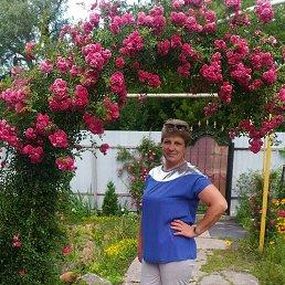 Фото Елена, Воронеж, 43 года - добавлено 28 апреля 2021