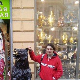 Владимир, 33 года, Климовск