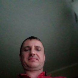 Сергей, 44 года, Полтава