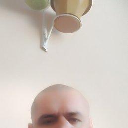 Саша, 42 года, Хабаровск