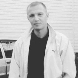 Сельсков, 37 лет, Набережные Челны