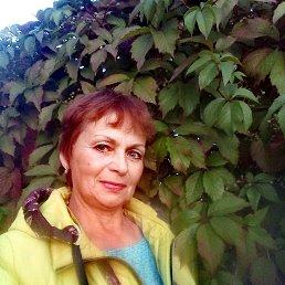 Галина, 61 год, Малая Вишера