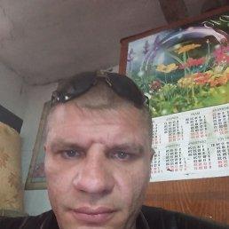 Евгений, 41 год, Зерноград