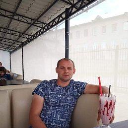 Игор, 34 года, Житомир