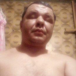 Виктор, 37 лет, Сочи