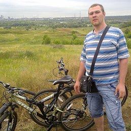 Роман, 37 лет, Липецк