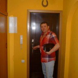 евгений, 41 год, Серебряные Пруды