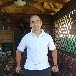 Арт, 33 года, Славянск