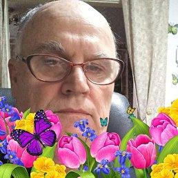 Владимир, 66 лет, Хабаровск