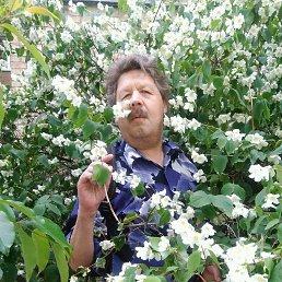 михаил, 56 лет, Киев
