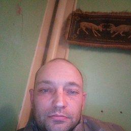 Анатолий, 38 лет, Переславль-Залесский