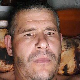 Антон, Краснодар, 39 лет