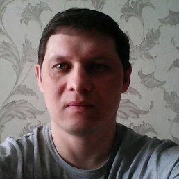 Дима, 45 лет, Тверь