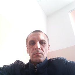 Виктор, 41 год, Ставрополь