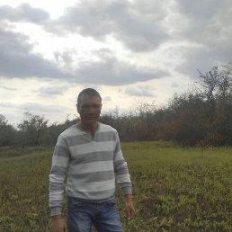 Сергей, 45 лет, Краснодон