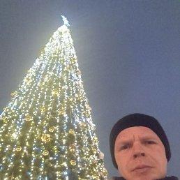 Александр, Нижний Новгород, 37 лет