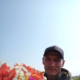 Геннадий, 29 лет, Владивосток