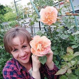Юлия, 41 год, Тимашевск