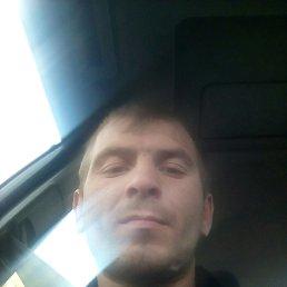 Сергей, 29 лет, Воронеж