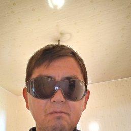 Алик, 30 лет, Владивосток