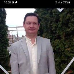 Александр, 42 года, Саратов