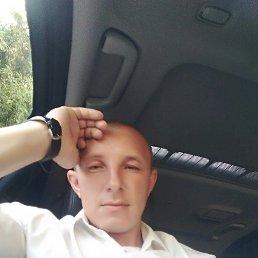 Владимир, 40 лет, Сочи