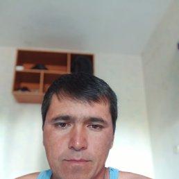 Максим, 40 лет, Воронеж